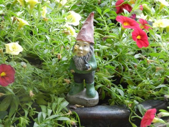 Mini gnome!