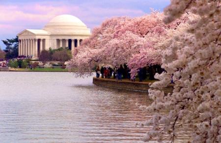 photo credit: blog.freepeople.com