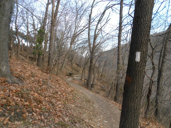 Where we hiked on the trail, following the Shenandoah River below.  See the white marker on the tree?
