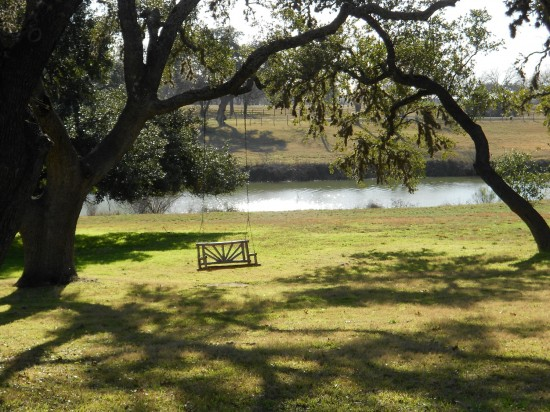Lone swing - Texas White House - near Austin, TX