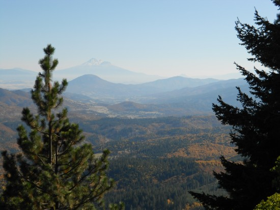 Snow capped Mt. Shasta in the distance - the valley floor colored with the gold colors of fall