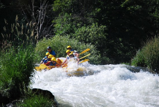 This is us, rafting with Will and having the time of our lives while making lasting memories