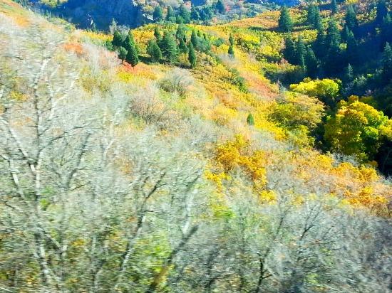 Near Lamb's Canyon in Utah