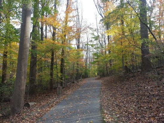 Rock Creek Park Trail
