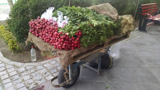 The freshest produce on a simple cart.