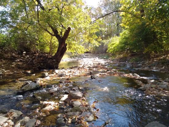 Owen's Creek flows under the Roddy Road Bridge
