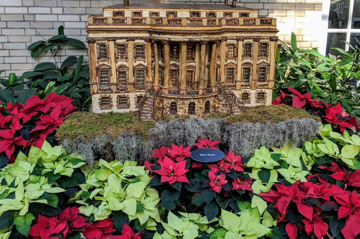Christmas at the US Botanic Garden - One Road at a Time