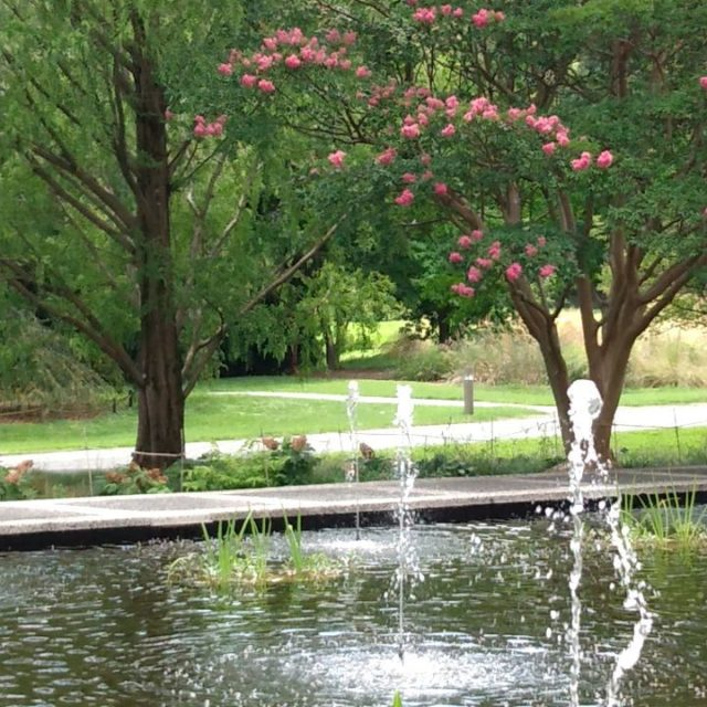 Moments of Zen #nationalarboretum #washingtondc #fountain #momentofzen #water #pond
