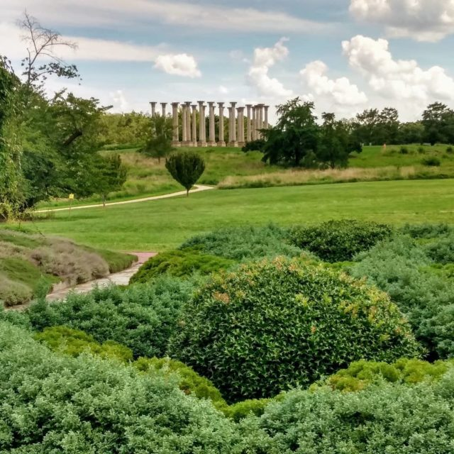 National Arboretum Washington DC. #washingtondc #nationalarboretum #capitolcolumns #photography #tavelphotography #picture #travelblogger #garden #takeahike