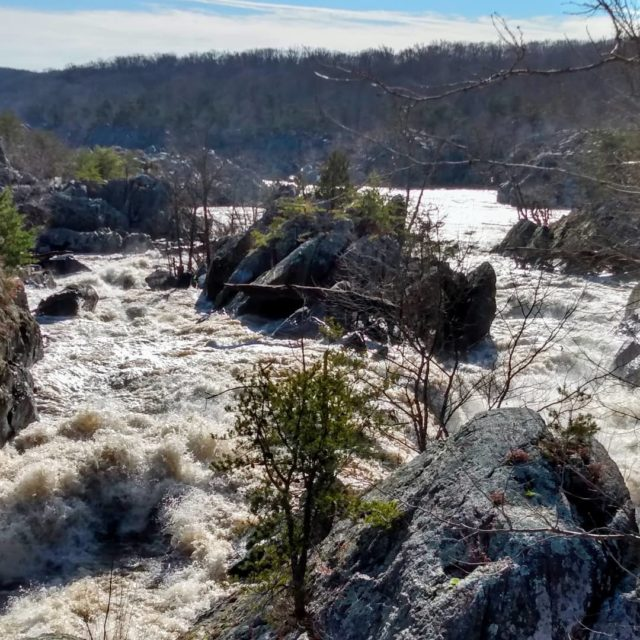 New post: www.oneroadatatime.com Did you know that Great Falls National Park is in both Virginia and Maryland?  #greatfalls #greatfallsva #greatfallsmd #nationalpark #naturephotography #travelphotography