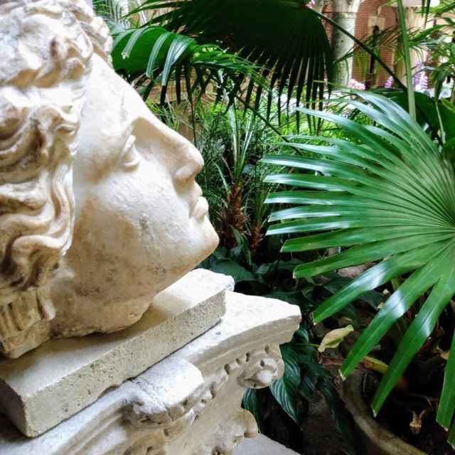 A day at the museum. @gardnermuseum #garden #museum #bust #photography #hosted